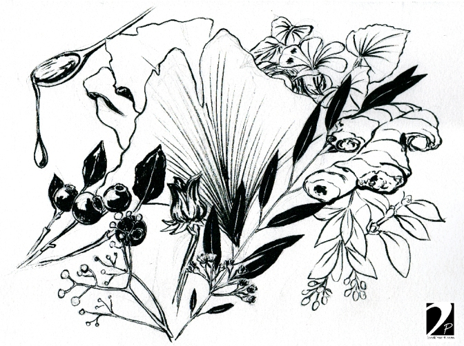 Sketch of natural remedies inspired by a national geographic magazine.